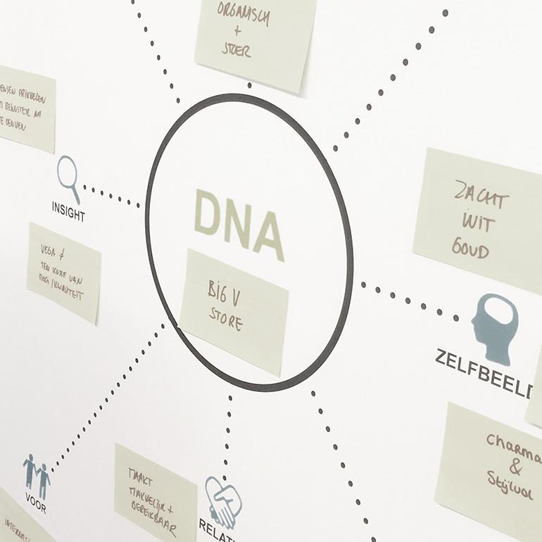 Big V Store, DNA