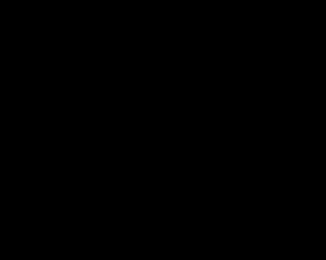 De Plekkenmakers logo zwart payoff