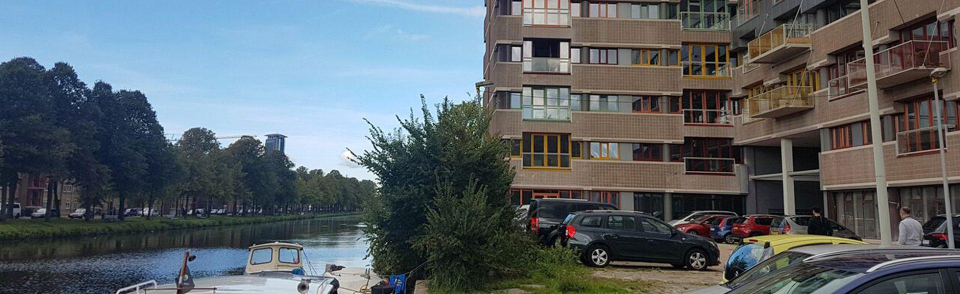 Rebelz: op de Binckhorst